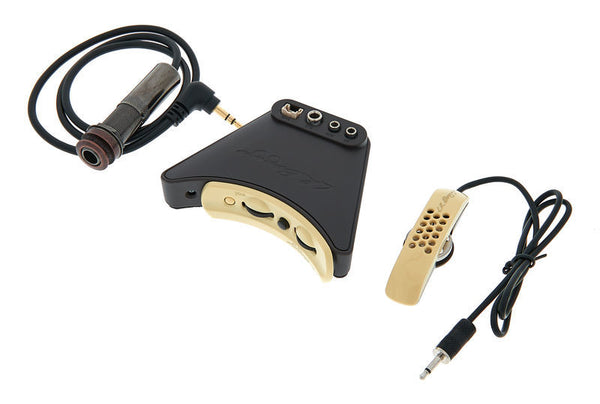 LR BAGGS ANTHEM TRU MIC & ELEMENT ACOUSTIC GUITAR PICKUP