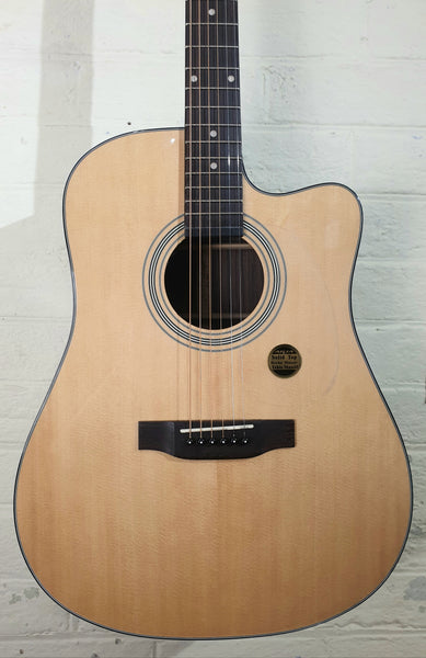 ARIA DREADNOUGH ACOUSTIC - ALL SOLID ROSEWOOD BACK & SIDES