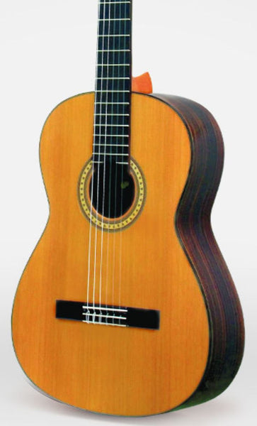 ESTEVE 6PS - CEDAR TOP & ROSEWOOD CLASSICAL GUITAR