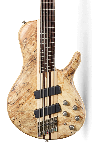 CORT A5 PLUS MULTISCALE 5-STRING BASS - NATURAL W/ CASE