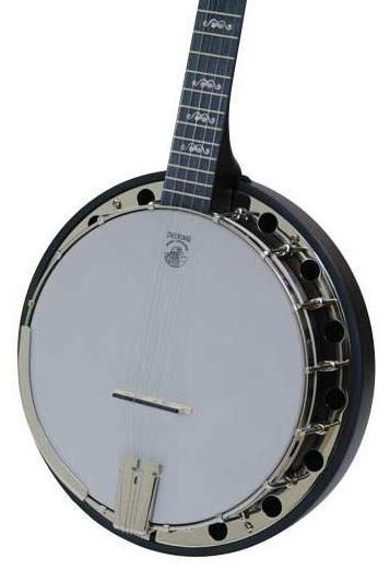 DEERING GOODTIME 2 ARTISAN RESONATOR BACK BANJO