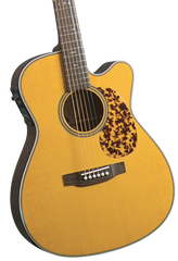BLUERIDGE BR-163CE HISTORIC SERIES SOLID 000 CUTAWAY ACOUSTIC