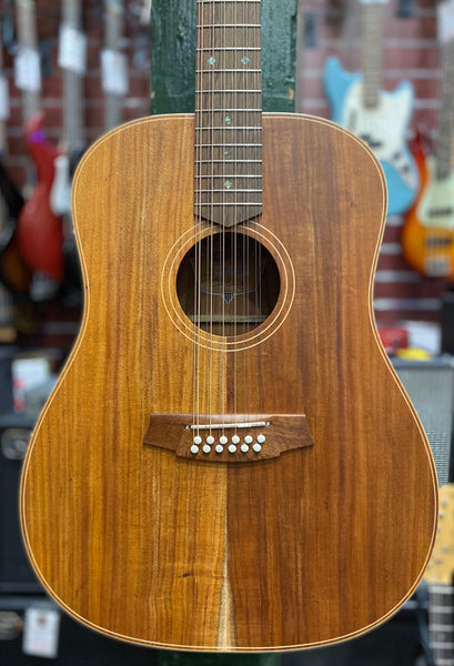 COLE CLARK FAT LADY 2E 12-STRING - ALL BLACKWOOD