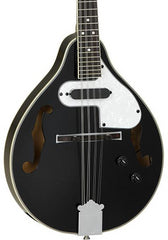TANGLEWOOD UNION MANDOLIN BLACK WITH PICKUP