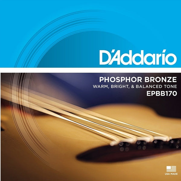 D'ADDARIO ACOUSTIC BASS BRONZE EPBB170 - 45-100 LIGHT