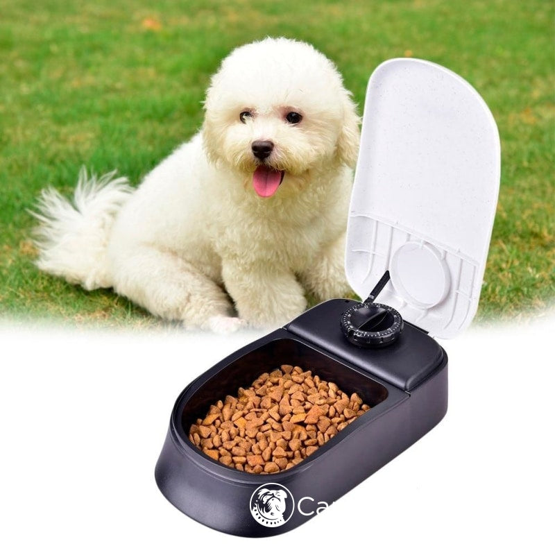 Automatic Dog Feeder With Timer