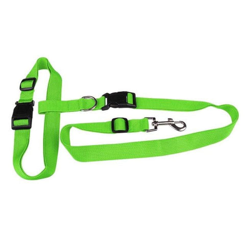 Dog Traction Jogging Collar Green / M