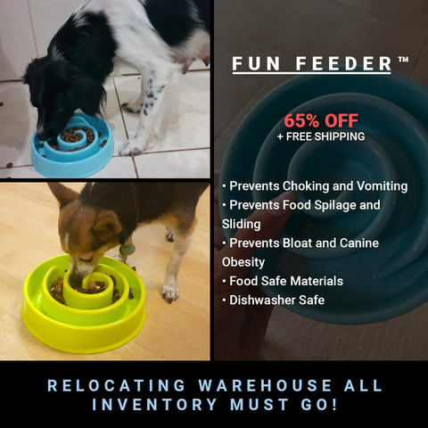FUN FEEDER Interactive Dog Bowl