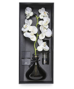 WHITE FLOWERS - The Orchid - SENTI