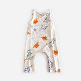 Dinosaur Romper Multi Color