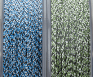 Finatic Pro Series green and blue spools side by side