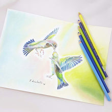 Little tropical birds,oaak,original drawing,pencils and pastels on paper,30x21 cm./11,8x8,3 inc.FREE SHIPPING,gift idea,wall art,decoration