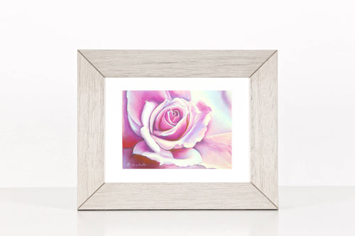 Pastel drawing with fuchsia rose, Original art by Francesca Licchelli, soft pastel on Pastelmat paper, home office decoration, bedroom art.