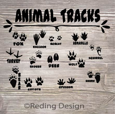 Animal Tracks SVG PNG DXF Digital Cut File