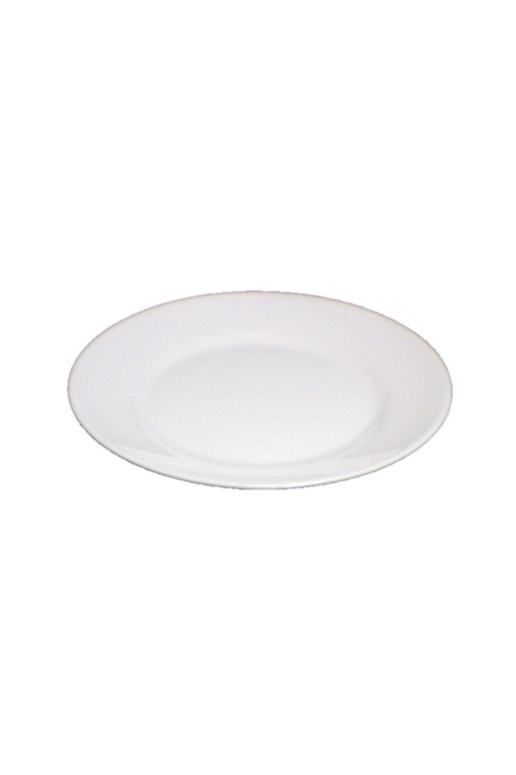 "Thick 10"" Dinner Plate"