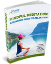 Mindful Meditation : Beginners Guide to Relaxation