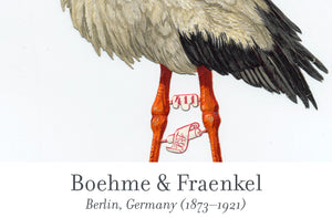 Boehme & Fraenkel scrap reliefs publisher's mark