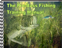 Essential Bass Fishing Tips & Techniques Deliver Absolutely Great Results