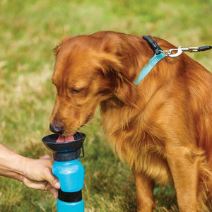 Squeezy Dog Water Dispenser