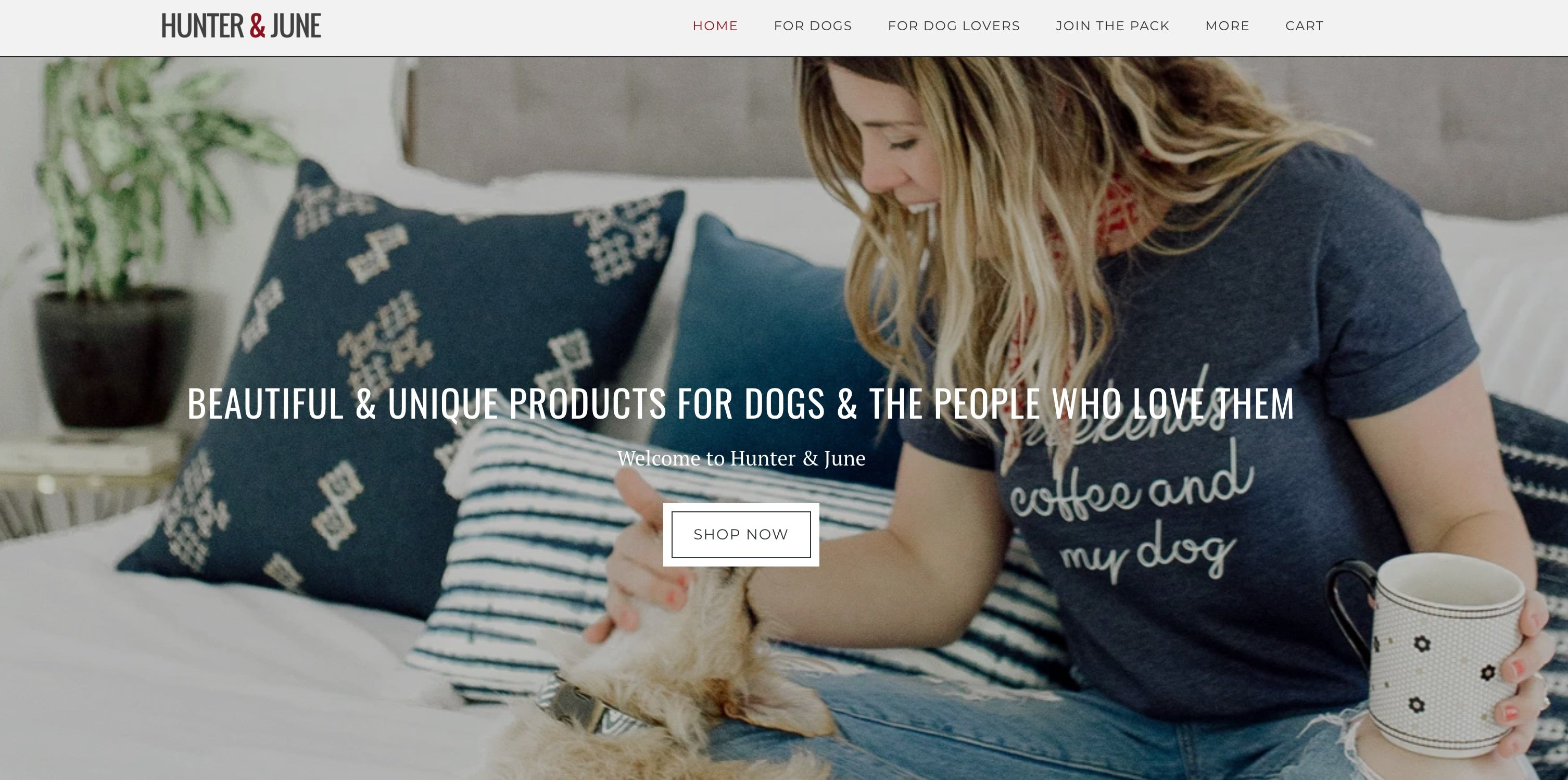 dog products site