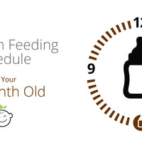 12 Month Old Feeding Schedule
