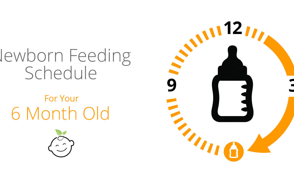 6-Month-Old Feeding Schedule | Baby Earth