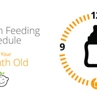 6-Month-Old Feeding Schedule
