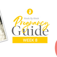 8 Weeks Pregnant: Your Weekly Pregnancy Guide