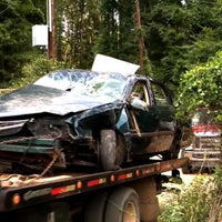 Toddlers Survive in Woods After Crash Killed Mother