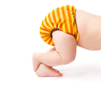 The Great Cloth Diaper Change: Changing the World One Diaper at a Time