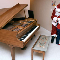 """Santa"" Brings Piano to Boy With Autism"