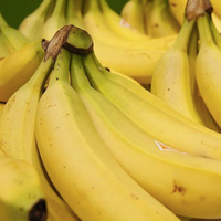 Could Eating Bananas Help Ensure You Have A Boy?