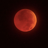 Don't Miss The Super Blood Wolf Full Moon Coming This Month