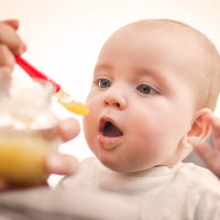 Top 5 Stage 1 Baby Food Recipes