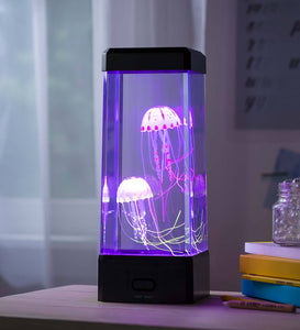 Large Jellyfish Aquarium