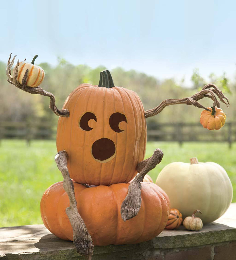 Decorative Foam Halloween Pumpkin Appendages with Bendable Wire Core
