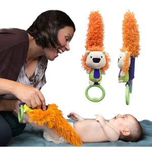 Lion Developmental Toy