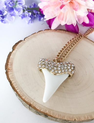Lucky Sharks Tooth Necklace