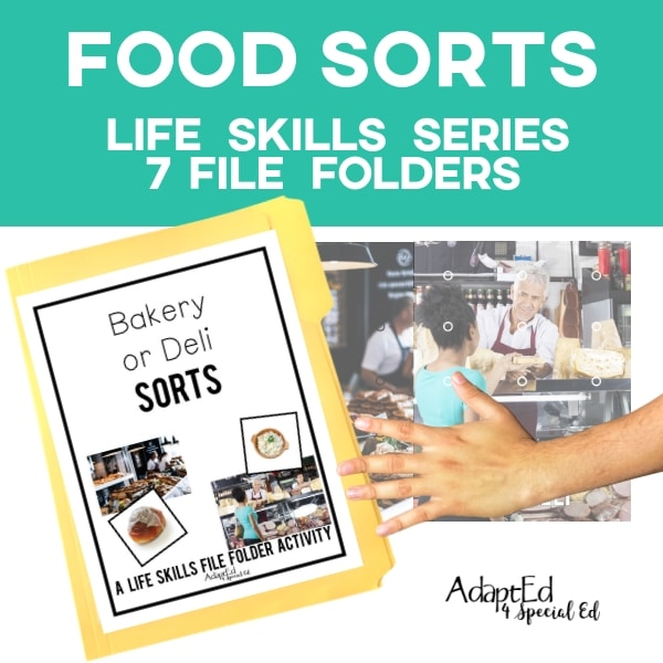 File Folders: Food Sorts Pack (Printable PDF)