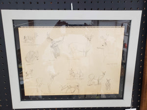 1974 Unsigned Dear Sketches in Frame