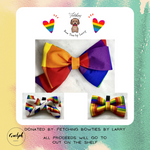 (Canada Wide) Pride Bow Box - donated by Fetching Bowties By Larry-Guelph Market