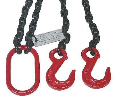 DAYTON 2UKD9 Chain Sling G80 DOS Alloy Steel 5 ft 6100 lb Two Hook