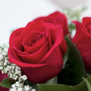Never-Ending Love: 12 Red Roses