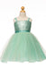 New Arrival Spaghetti Straps Sequins Top Tulle Skirt Flower Girl Dresses, FG0125