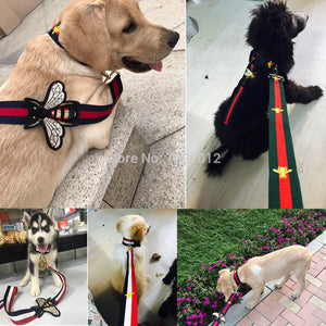 Gucci Style Collar/ Leash Set