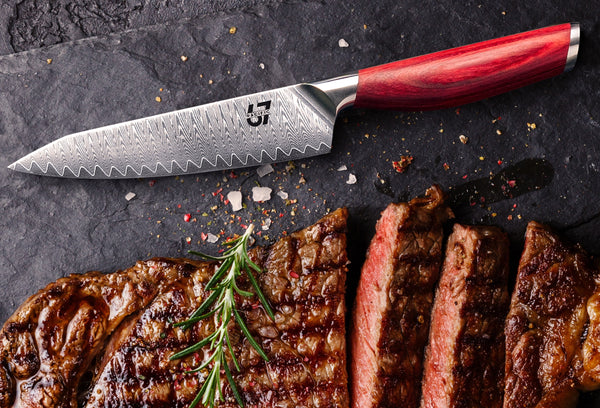 steak knife and steak
