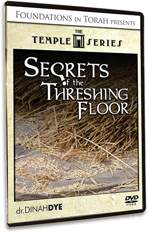The Temple Series - Secrets of the Threshing Floor
