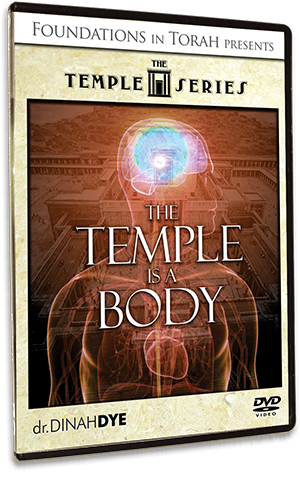 The Temple Series - The Temple is a Body