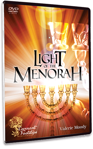 Menorah Series - Light of the Menorah