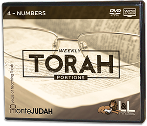 Weekly Torah Portions - Widescreen-DVD - 4 Numbers